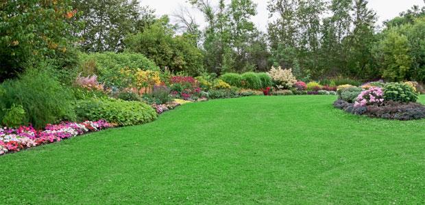 Providing Competent Landscape Services