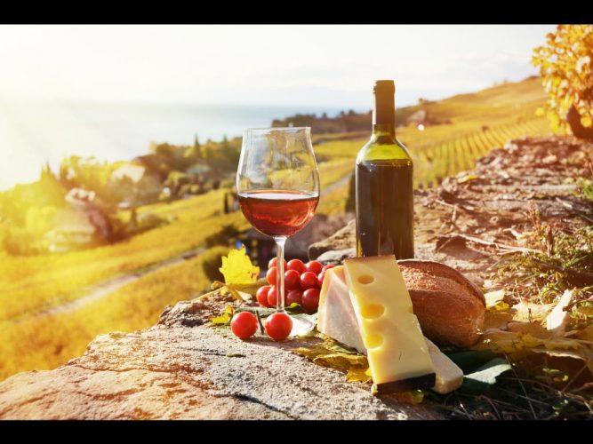 Hunter Valley Vineyard